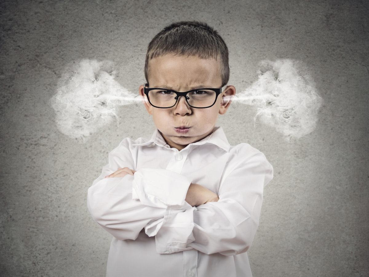 Kinderbücher zum Thema Wut #Gefühleverstehen #WutvonKindern #Autonomiephase #Wutanfall